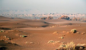 Distant view of Turpan grape drying houses